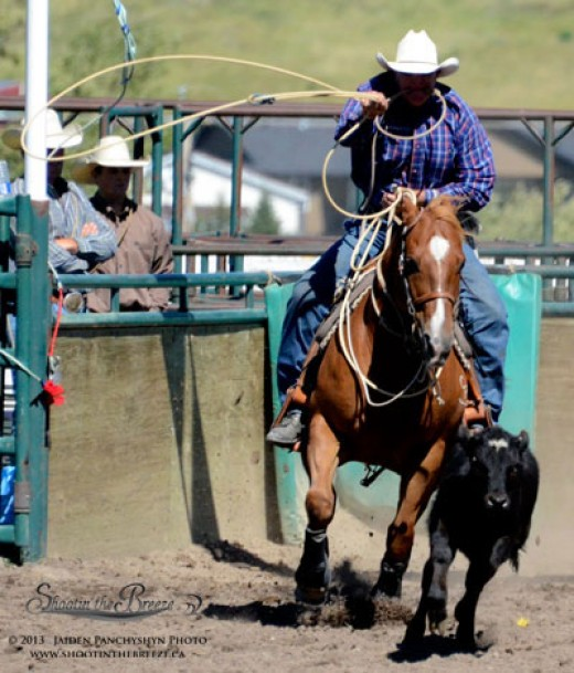 Tie-down roping photo highlights