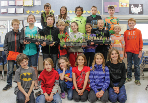 Little Green Thumbs grow more than plants