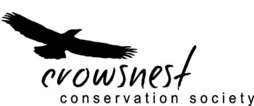 Join in Crowsnest Christmas Bird Count