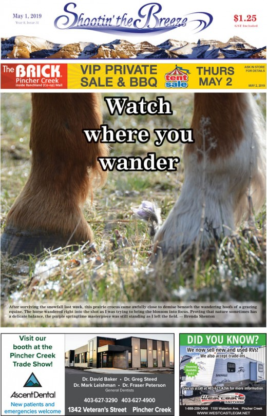 Don't miss this week's issue!